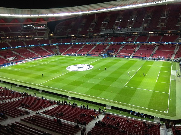Perfect Soccer Field